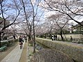 銀閣寺前 - panoramio.jpg