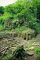 02Steinbruch Finkenberg LSG-5208-0015.JPG