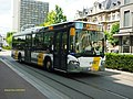 106386 Delijn - Flickr - antoniovera1.jpg