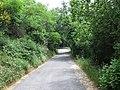 17100 Savona, Province of Savona, Italy - panoramio (2).jpg