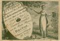 1800 Cushman hair Boston.png