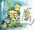 1999. Stamp of Belarus 0340.jpg