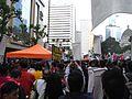 2010-01-01 marching 028.JPG