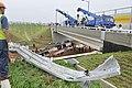 20100703중앙119구조단 인천대교 버스 추락사고 CJC3666.JPG