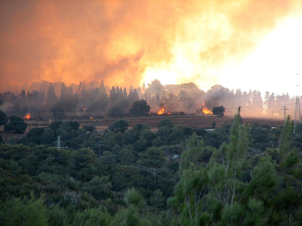 hechos y fenomenos:israel 1024px-2010_Carmel_forest_-_fire_near_Isfiya