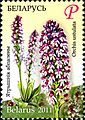 2011. Stamp of Belarus 46-2010-12-27-m2.jpg