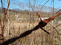 2012-03-13 10-34-17-site-plutons-site-barbele.jpg