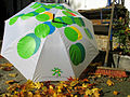 2012 im Herbst, aufgespannter Regenschirm mit dem Logo der Gartenregion Hannover, kik-Projekthaus der Künstlerkooperative kik. kunst in kontakt.jpg