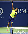 2014 US Open (Tennis) Tournament - Dustin Brown (14954775790).jpg