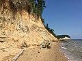 2016-07-20 10 10 04 Cliffs to the north of Grays Creek in Calvert Cliffs State Park, Calvert County, Maryland.jpg