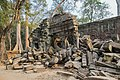 2016 Angkor, Ta Prohm (15).jpg