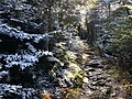 2020-10-17 14 35 57 View west along the Lookout Rock Trail on Equinox Mountain in Manchester, Bennington County, Vermont.jpg