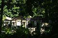 22viki Cmentarz żydowski na Ślężnej. Foto Barbara Maliszewska.jpg