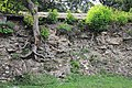 26-216-0054 Czernelycia DSC 9625.jpg