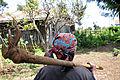 2DU Kenya68 (5367351560).jpg