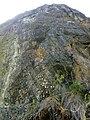 35-211-5004 Казавчинські скелі Лютинська 20.jpg