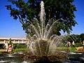 "354. Peterhof. Fountain ""Sheaf"".jpg"