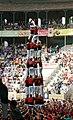 4de8 Nens del Vendrell-Concurs2010.jpg