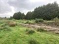 5828 Groen.Westpark.DeHeld.Leegkerk.202009 Brug Water Zwedenlaan Tarralaan Scounting VariaSki Hoogkerk Buitengebied.jpg