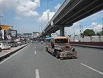 6264NAIA Expressway Road, Pasay Parañaque City 40.jpg