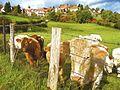 63700 Montaigut, France - panoramio (42).jpg