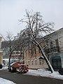80-385-0228 Kyiv IMG 8413.jpg
