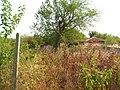 8921 Omarchevo, Bulgaria - panoramio (109).jpg