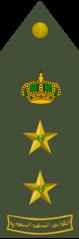 عقيد رتبة عسكرية ويكيبيديا