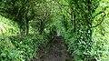 A Cornish Mining Walk - geograph.org.uk - 589193.jpg