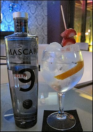Gin and tonic - A Spanish Gin-Tonic served in a balloon glass.