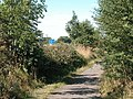 A Green lane near motorway - geograph.org.uk - 36132.jpg