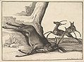 A dead stag, anonymous copy MET DP823975.jpg