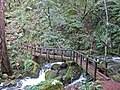 A footbridge over the rushing Cataract Creek during a break in winter rains. - panoramio.jpg