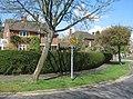 A good garden hedge - Neville Close - geograph.org.uk - 776085.jpg