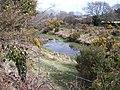 A minor tributary of Afon Erch near Gwernallt - geograph.org.uk - 1779071.jpg