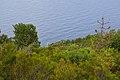 A picco sul mare - panoramio.jpg