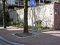 A small new city garden in the sunlight of spring; Amsterdam-Centrum, in 2013.jpg