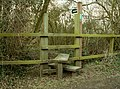 A stile on Southolt Road - geograph.org.uk - 353207.jpg