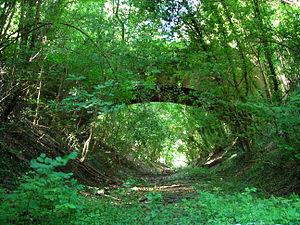 Marlow branch line - Abbey Barn Lane Bridge