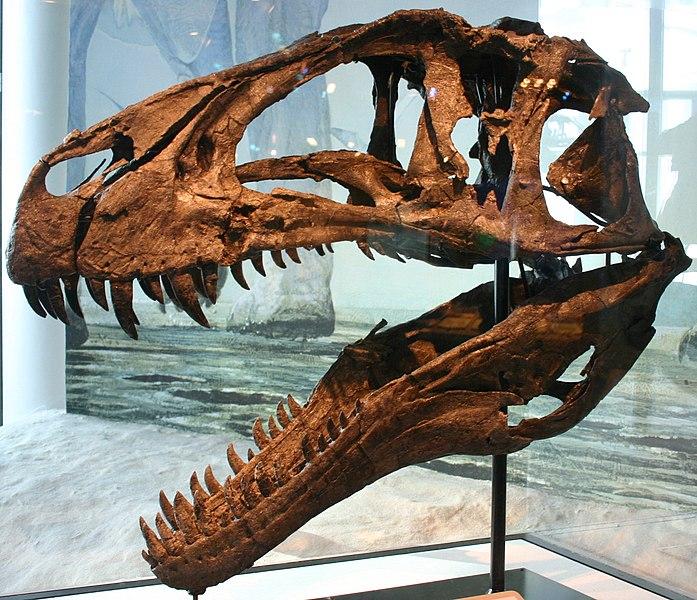 Smiley's News: Dr. Samuel's New Dinosaur Discoveries