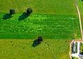 Aerial Twente (6775424498).jpg