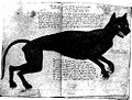 Agnes Bowkers cat Figure-5.57-1569.jpg