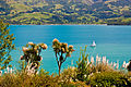 Akaroa Garden Tour 6, Mumfords Garden, 21 St.,Nov. 2010 - Flickr - PhillipC.jpg
