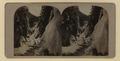 Albert Canyon (HS85-10-19335) original.tif