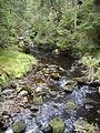 Allt Mor in Raven's Rock Gorge - geograph.org.uk - 571240.jpg