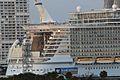 Allure of the Seas (8615661911).jpg