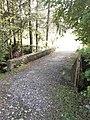 Alte Salzbrunnen-Brücke, Sachseln, Obwalden, Schweiz.jpg