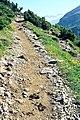 Altos Pirineos 1981 14.jpg