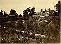 American homes and gardens (1911) (18131547836).jpg