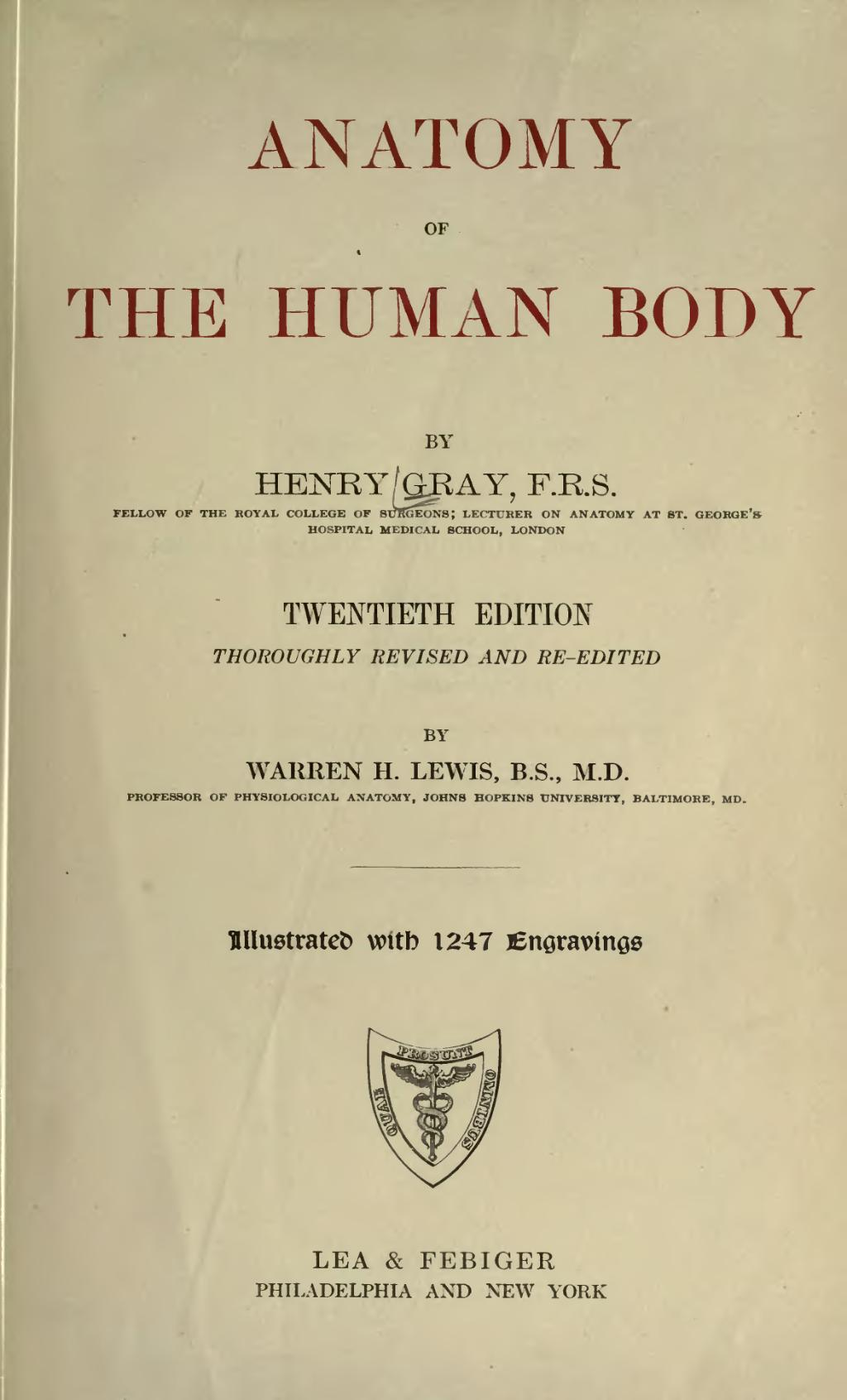 Pageanatomy Of The Human Bodylewis 1918vu7 Wikisource The